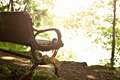 Picture widescreen, bench, leaves, HD wallpapers, Wallpaper, leaves, tree, shop, full screen, the sun, background, fullscreen, ...