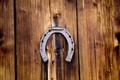 Picture horseshoe, photographer, happiness, guardian, markus spiske