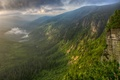 Picture morning, mountains, fog, river, valley, forest
