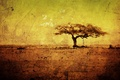 Picture trees, yellow, tree, figure, heat, minimalism, texture, dirt, art, drawings, Africa, texture, yellow