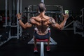 Picture man, workout, back, bodybuilding