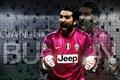 Picture Captain, goalkeeper, Juventus, Gianluigi Buffon, Italian footballer, El Buff, Gigi, Gianluigi Buffon Masocco, Bufonidae