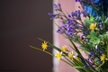 Picture flowers, macro, bouquet, blue, yellow, brown