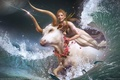 Picture wave, Bull, Kidnapping, Europe