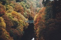 Picture autumn, trees, nature, river