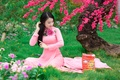 Picture Asian, face, dress, sitting, grass, flowering, Sakura