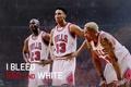 Picture Basketball, Michael Jordan, NBA, Michael Jordan, NBA, Basketball, Dennis Rodman, Scottie Pippen, Dennis Rodman, Scottie ...