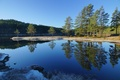 Picture reflection, the sky, forest, pine, trees, river, landscape
