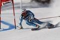 Picture France, skiing, Val d'Isere, Aksel Lund Svindal, Aksel Lund Svindal Silver, colmar, slalom-ligand
