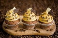 Picture yellow, coffee, chocolate, grain, Board, leaves, cream, dessert, cupcakes, Anna Verdina