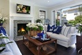 Picture flowers, interior, booze, table, TV, sofas, pillow, plasma, room, the home comfort., fireplace