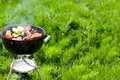 Picture BACKGROUND, NATURE, GRASS, STAY, GREEN, PICNIC, BBQ