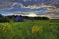 Picture the sky, house, field