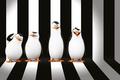 Picture cartoon, background, Penguins of Madagascar, DreamWorks Animation, The Penguins Of Madagascar