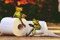 Picture vintage, rendering, frog, paper, toilet, style, animals