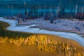 Picture China, Kanas National Nature Reserve, snow, trees, autumn, contrast