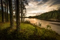 Picture the evening, river, forest