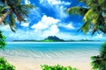 Picture palm trees, tropics, beach, nature