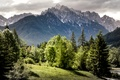Picture greens, forest, the sun, trees, mountains, rocks, Slovenia