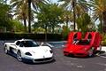 Picture white, red, palm trees, Parking, red, white, ferrari, Ferrari, enzo, Maserati, parking, Enzo, macerati, эмси12, ...