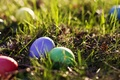 Picture eggs, spring, colorful, Easter, eggs, Easter, grass, greens, colored, grass, spring