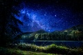 Picture forest, the sky, grass, stars, trees, night, lake, Croatia, Trakoscan
