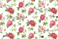 Picture peony, labels, flowers, nature, peony, letters