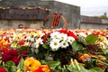 Picture flowers, memory, May 9, Victory Day, 9 May, Victory Day, George ribbon