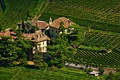 Picture photo, The city, Castle, Spruce, Italy, Field, castle Bolzano, Vinery