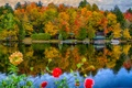 Picture autumn, trees, flowers, lake, Park, house